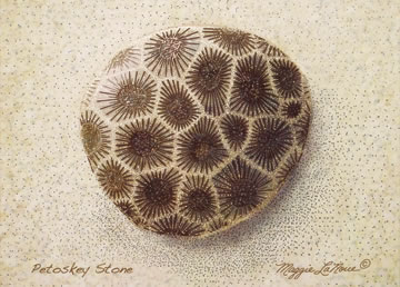 Petoskey Stone Full Color Giclee Print